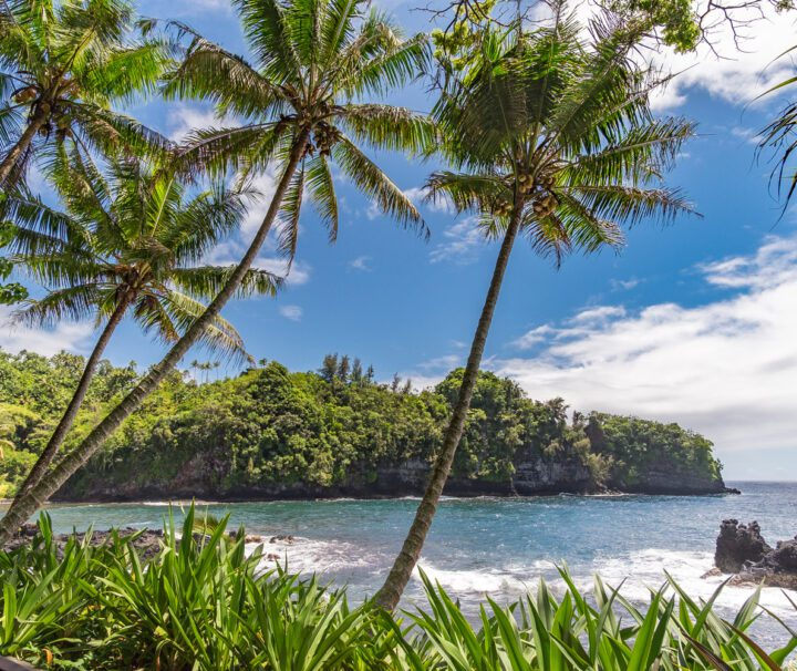 Hilo Bay Myths and Legends Raft Adventure