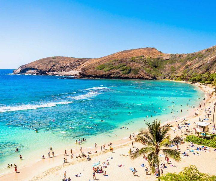 Hanauma Bay Shuttle & Snorkel Gear Rental