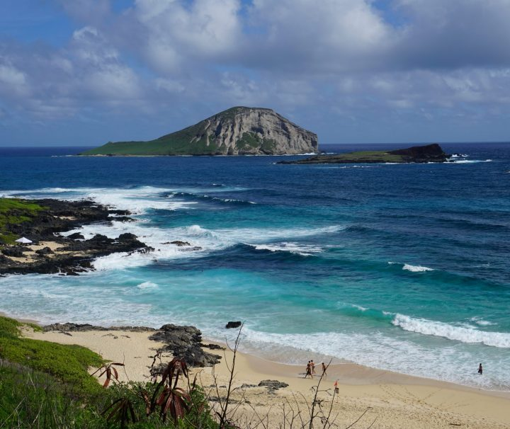 Oahu Food and Sightseeing Tour Best Tour