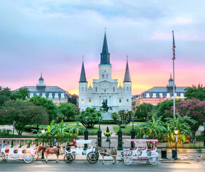 New Orleans 3 Hour City Tour